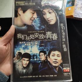 DVD光盘 我们无处安放的青春 2碟简装完整版