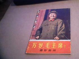 万岁,毛主席 摄影画册