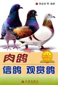 9787800220968/肉鸽 信鸽 观赏鸽/陈益填 编著*金盾出版社