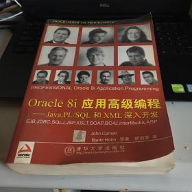 Oracle8i应用高级编程:Java PL、SQL和XML深入开发