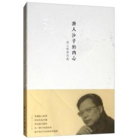 潜入沙子的内心:迟云哲思诗选 山东人民出版社 9787209116992 迟云