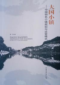 大国小镇中国特色小镇规划与运营模式