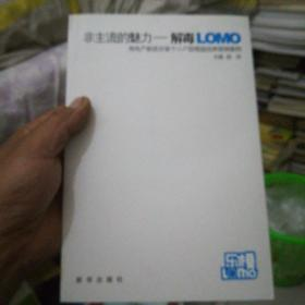 非主流魅力——解毒LOMO:房地产新政后首个小户型楼盘经典营销案例【16开】