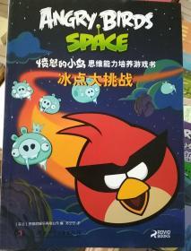 愤怒的小鸟思维能力培养游戏书·冰点大挑战
