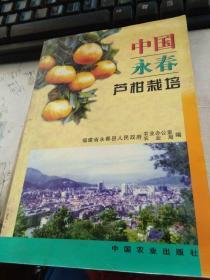 中国永春芦柑栽培
