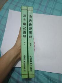 汤头趣记图释(上下两册)  2本合售    书8品如图----内容完整---阅读没有问题