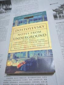 DOSTOYEVSKY NOTES FROM UNDERGROUND