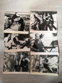 黑眼镜蛇 法国意大利电影剧照 包邮挂刷