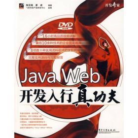 开发专家:Java Web开发入行真功夫