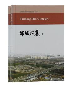 邰城汉墓(套装全2册)