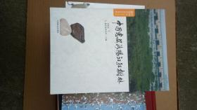 中国惠安洛阳江红树林