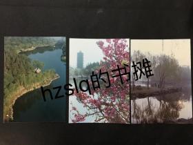 约90年代北京大学未名湖及博雅塔等湖畔风景,彩色照片3张合售(17.5x12.5cm)