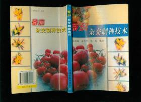 番茄杂交制种技术
