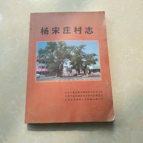 杨宋庄村志