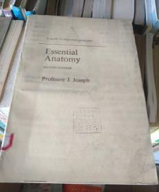 essential anatomy 基础解剖学 英文原版