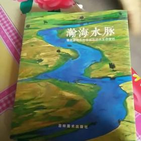 瀚海水脉(摄影家眼中的吉林西部水生态变迁画册)