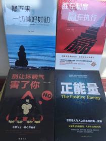 励志书籍(4册)正能量/别让坏脾气害了你/静下来一切美好如初/胜在制度赢在执行