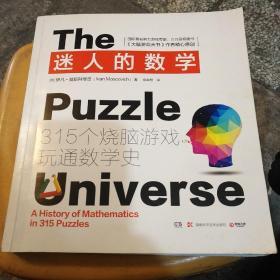 迷人的数学:315个烧脑游戏玩通数学史