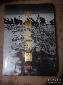 中国战洪图1991(硬精装)