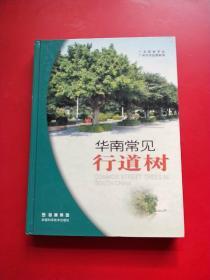 华南常见行道树 精装
