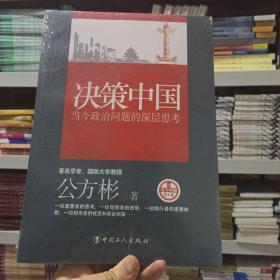 决策中国:当今政治问题的深层思考
