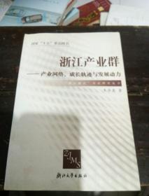 浙江产业群:产业网络成长轨迹与发展动力