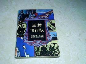 王牌飞行队-世界军旅王牌系列