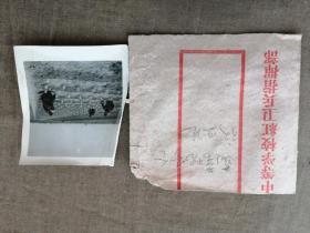 中等学校红卫兵指挥部、蔬菜现场会议照片