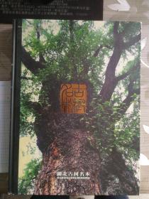 湖北古树名木(8K 精装 全彩印)