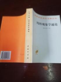汉译世界学术名著丛书 纯粹现象学通论