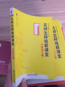 名师怎样观察课堂:小学语文卷