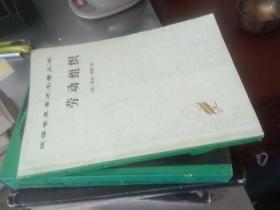 汉译世界学术名著丛书:劳动组织