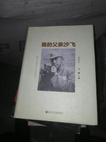 我的父亲沙飞(典藏版)