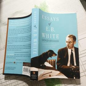 Essays of E. B. White