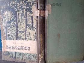 植物地理景观图谱