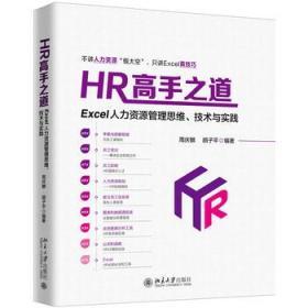 HR高手之道:Excel人力资源管理思维、技术与实践