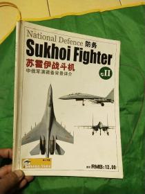 防务:苏霍伊战斗机专2