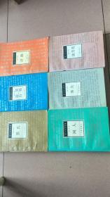 贾平凹自选集(6卷):长篇小说卷1《浮躁》2《妊娠·逛山》中篇小说卷3《黑氏》4《佛关》5《油月亮》6短篇小说卷散文卷 贾平凹 著