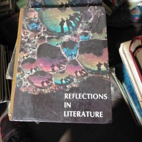 REFLECTIONS IN LITERATURE 文学反思 精装 英文版