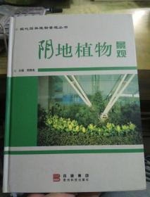 阴地植物景观