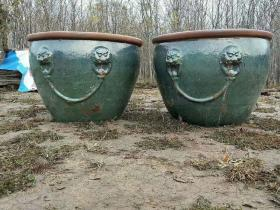 民国时期挂柚狮子头特大号大缸一对,全品,尺寸高80口径110