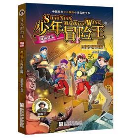 少年冒险王 神州寻宝:西夏王陵历险