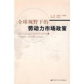 【正版书籍】全球视野下的劳动力市场政策