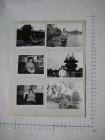 照片 36  【 照片上的合售】