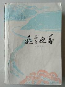 文革小说:飞雪迎春   第二版