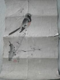 江寒汀,花鸟约1平尺