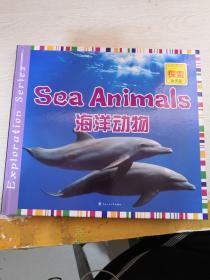 海洋动物(探索海洋篇)
