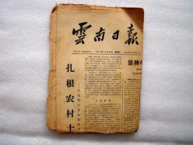 云南日报,1973年。扎根农村