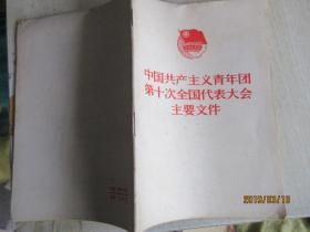 中国共产主义青年团第十次全国代表大会主要文件