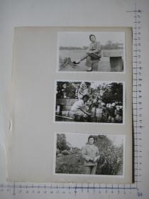 照片  黑白老旧照片  60 【 照片上的合售】